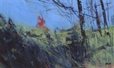Hillside Clearing Art Print