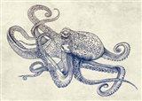 Octoflow Art Print