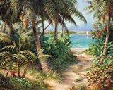 Bahama Sail Art Print