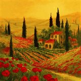 Poppies of Toscano II Art Print