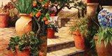 Turo Tuscan Orange Art Print