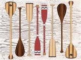 Canoe, Paddles & Oar Art Print