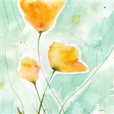 Precious Poppies Art Print