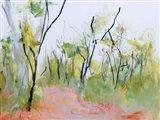Loop Trail Through Swamp Oak Woodland Art Print