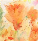 Windblown Poppies #2 Art Print