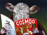 Cow Tips Art Print