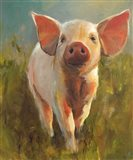 Morning Pig Art Print