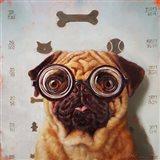 Canine Eye Exam Art Print