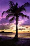 Brasalito Bay, Costa Rica Art Print