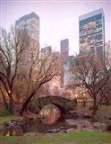 Central Park, NYC Art Print