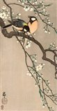 Songbirds on Cherry Branch, 1900-1910 Art Print
