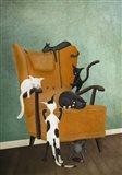 Catlife Art Print
