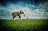 Elephant Follow Me Art Print