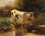 Cow Beside a Ditch, c. 1885-1895 Art Print