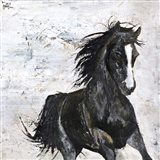 Wild Horse 1 Art Print