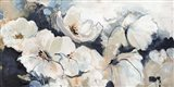 Flower Varity 2 Art Print