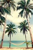 Palm Sky 3 Art Print