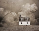 Lone House in Brown Art Print