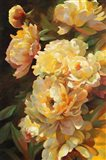 Peonies for Springtime Art Print