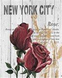 New York Roses Art Print