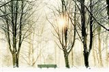 Too Cold To Sit Art Print