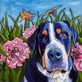 Dog and Dragonflies Art Print
