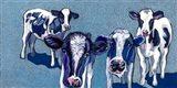 Four Cows Art Print