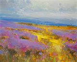 Field of Lavenders 2 Art Print