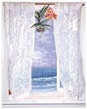 Open Curtains Art Print