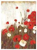 Scarlett Poppies Art Print