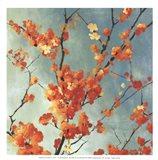 Orange Blossoms I - mini Art Print