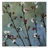 Wind Blossoms I - mini Art Print