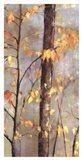 Golden Branches II Art Print