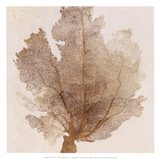 Luxe Coral II Art Print