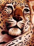 Rest On Serengeti Art Print