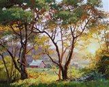 Burnished Landscape Art Print