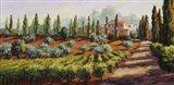 Italian Farmhouse Art Print