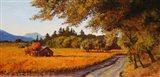 Dry Creek Autumn Art Print