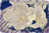 Summer Flowers Art Print