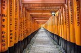 Fushimi Inari Taisha Shrine Kyoto Art Print