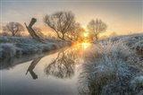 Sunrise Burns the Early Morning Mist off Beverly Brook Richmond Park 2 Art Print