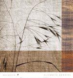 Botanica 7 Art Print