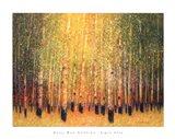 Aspen Glow Art Print