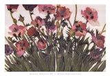 Spring Poppies IV Art Print