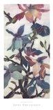 Magnolias XII Art Print