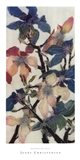 Magnolias XIII Art Print