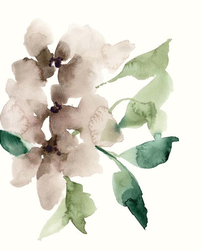 Mauve Flowers II