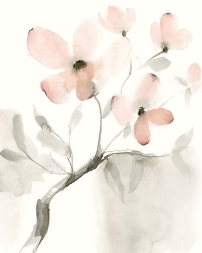Dogwood Dream I