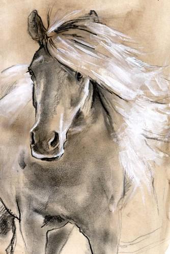 Sketched Horse I Art Print by Parker
