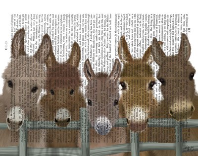 Donkey Herd at Fence Book Print Art Print by Fab Funky